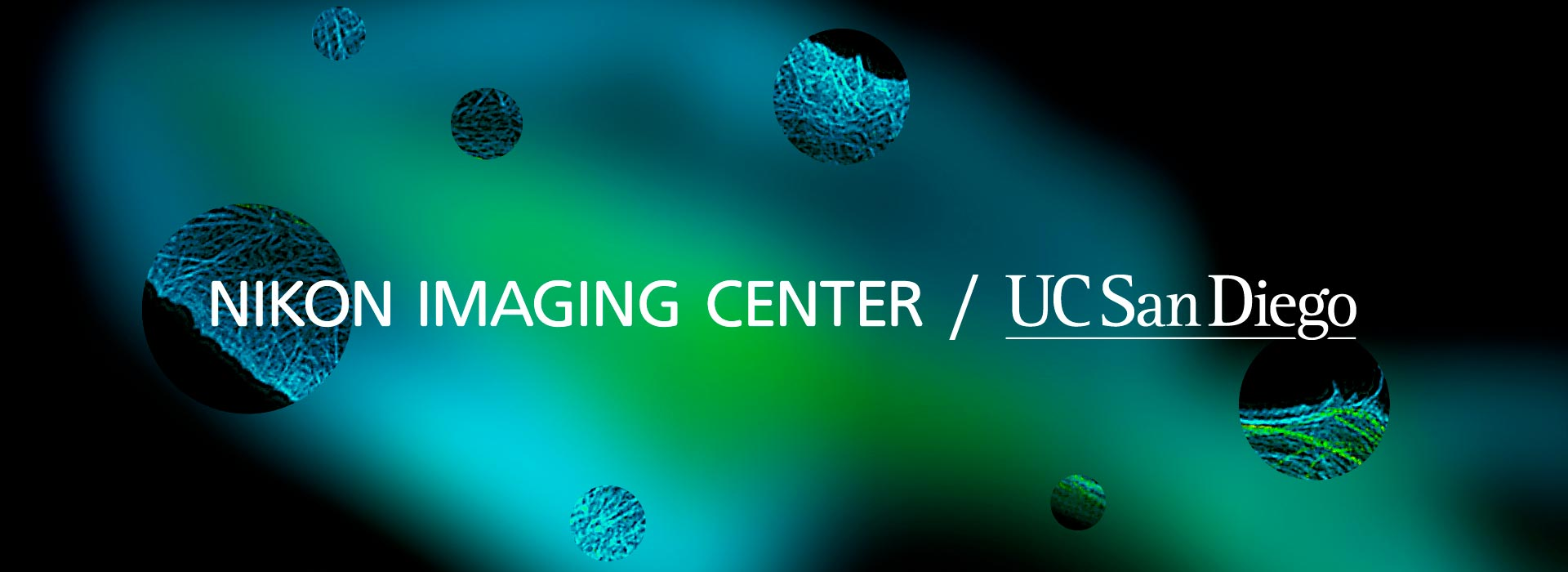 Nikon imaging center at the University of California San Diego logo